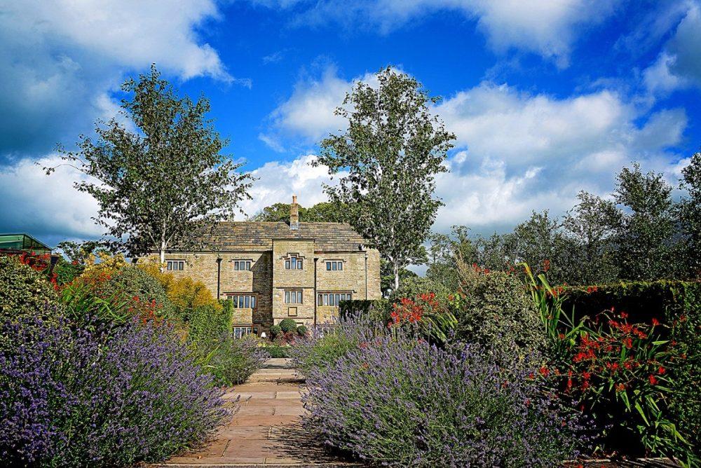1-Manor-Lavender